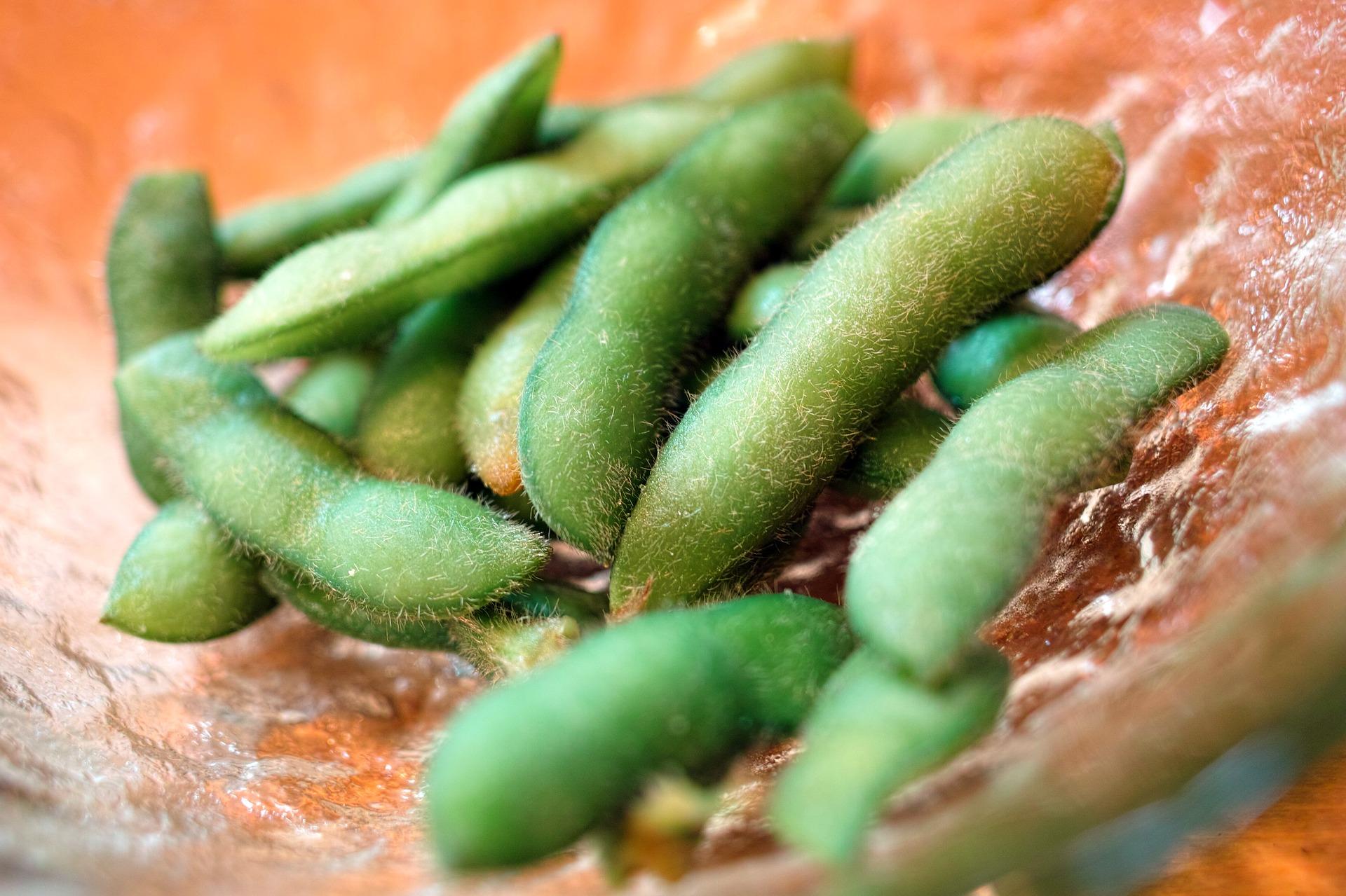 夏野菜『枝豆』